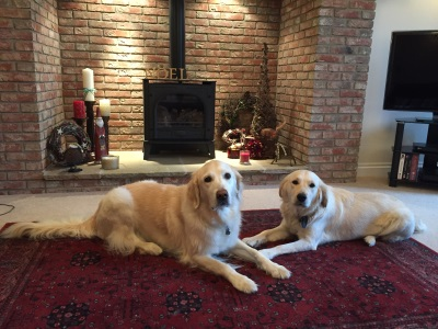 IMG_5185 resized Tess and Sam Christmas 2015